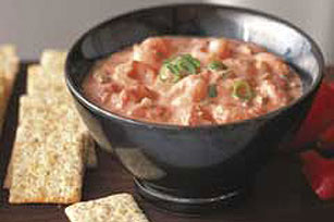 Salsa Shrimp Dip Recipe